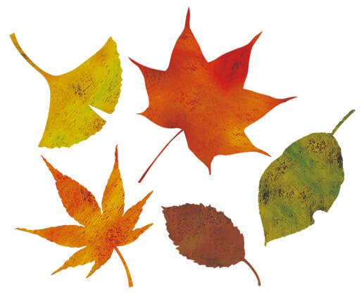 秋のイメージ