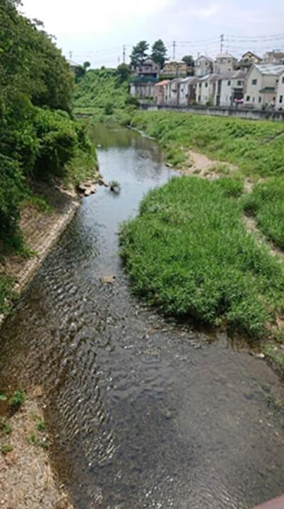 あきる野市平井川