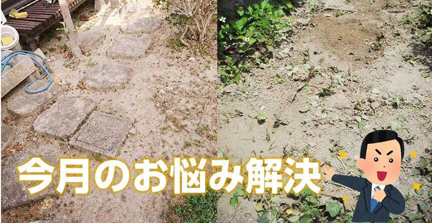 庭の敷石撤去